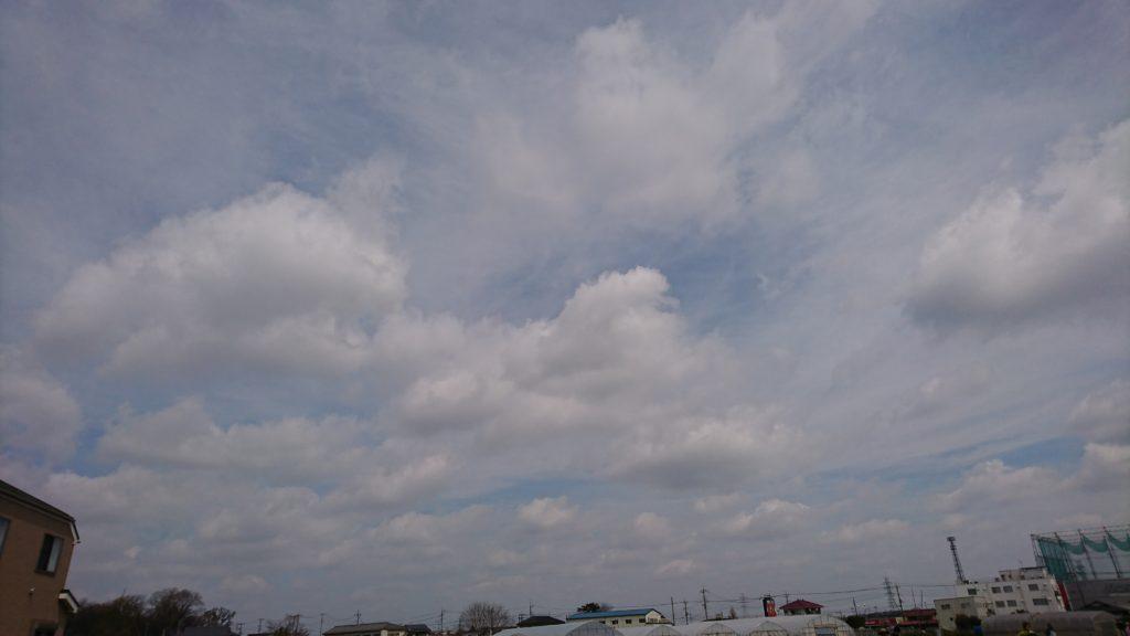 天気は微妙なところ