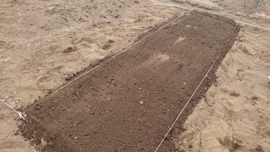 里芋はもう一度深く耕してから整えます