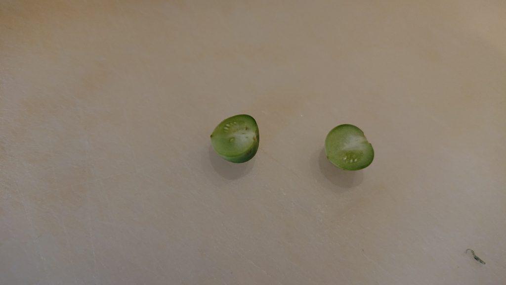 ジャガイモの実の断面