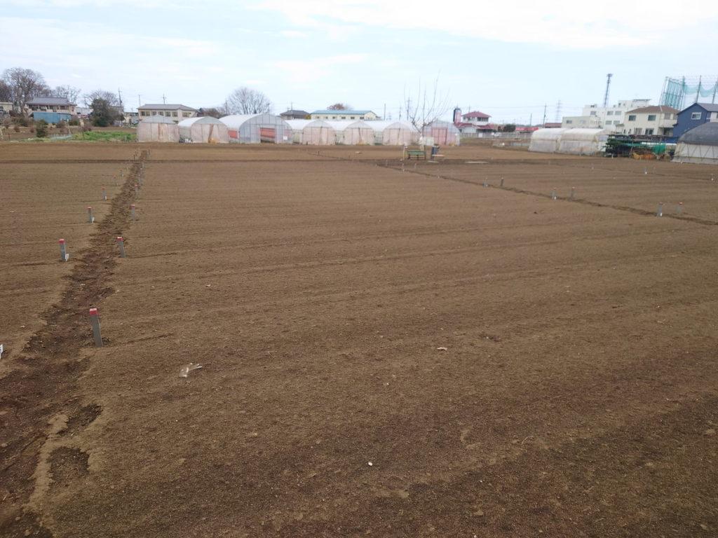 今年も畑生活が始まります