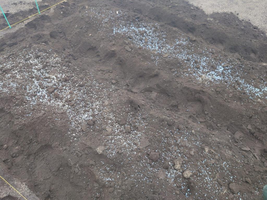 化成肥料や苦土石灰は野菜ごとに入れる量が違う